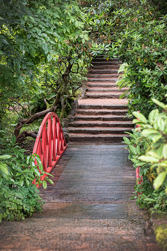 MacRobert Trust Gardens Bridge and Steps